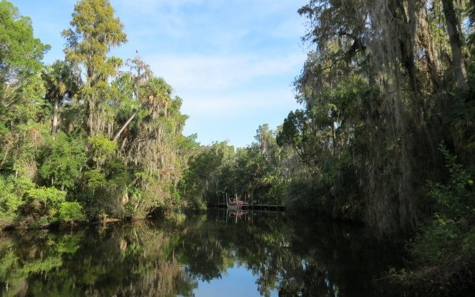 Riverfront Hideaway Homesite in Brandon, FL
