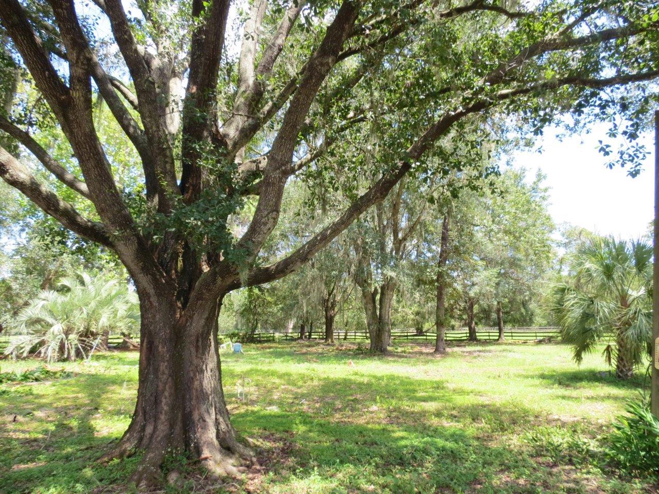 Hobson Simmons Road Homesite & Pasture 7.5 Acres in Lithia, FL