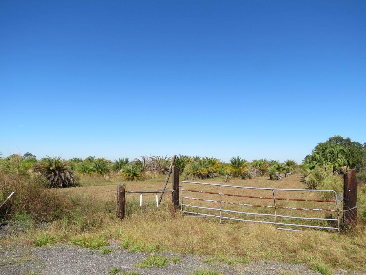 Linda Sweat Trail Homesite 10 Acres in Wimauma, FL