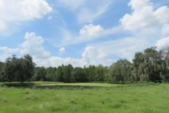 01-Southwood Oaks Homesite Pasture 47 AC