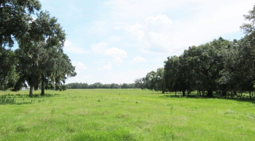 02-Southwood Oaks Homesite Pasture 47 AC