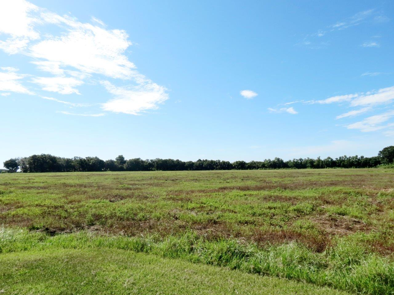 Grange Hall Loop Farm 83 Acres in Wimauma, FL
