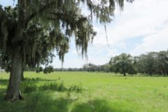 03-Southwood Oaks Homesite Pasture 47 AC
