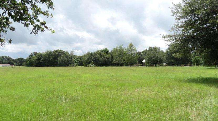 04-Bevin Hunter Lane Homesite, Lithia FL