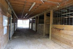 04-Hidden Hammock Horse Farm 20 AC