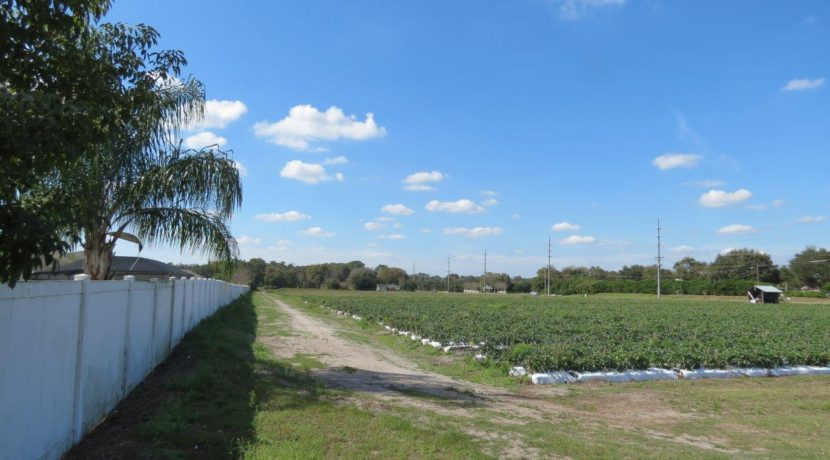 04-Trapnell Rd Homesite Lots 1 AC