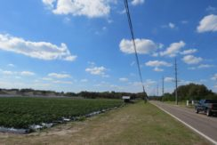 05-Trapnell Rd Homesite Lots 1 AC