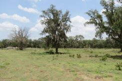 04-Summer Creek 20 Acres.