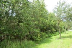05-Walden Woods 16 Lots