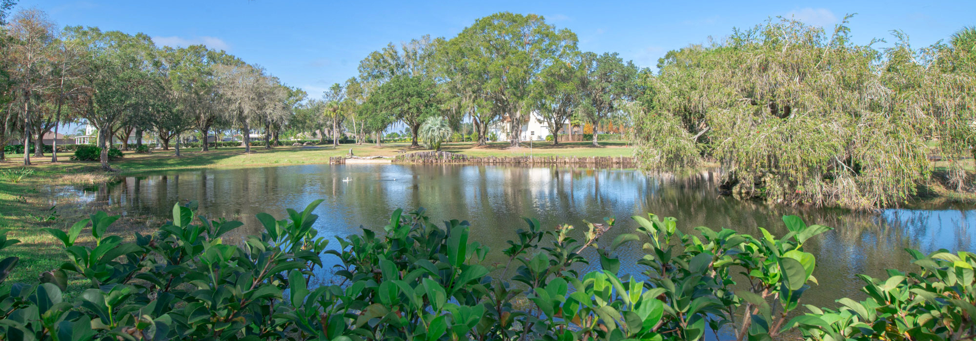 Holloway Hammock Estate Homesite 8 Acres in Plant City, FL