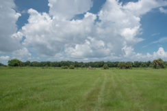 Brantley Reserve_8.5 Acres-2