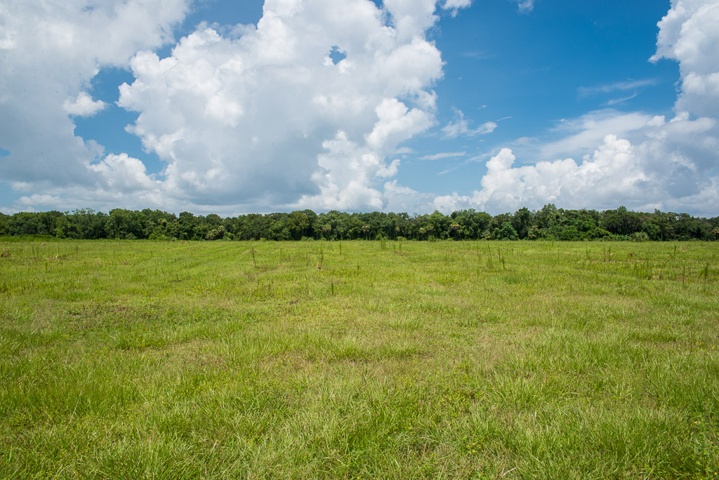 Brantley Reserve 8.5 Acres LOT 1 in Lithia, FL