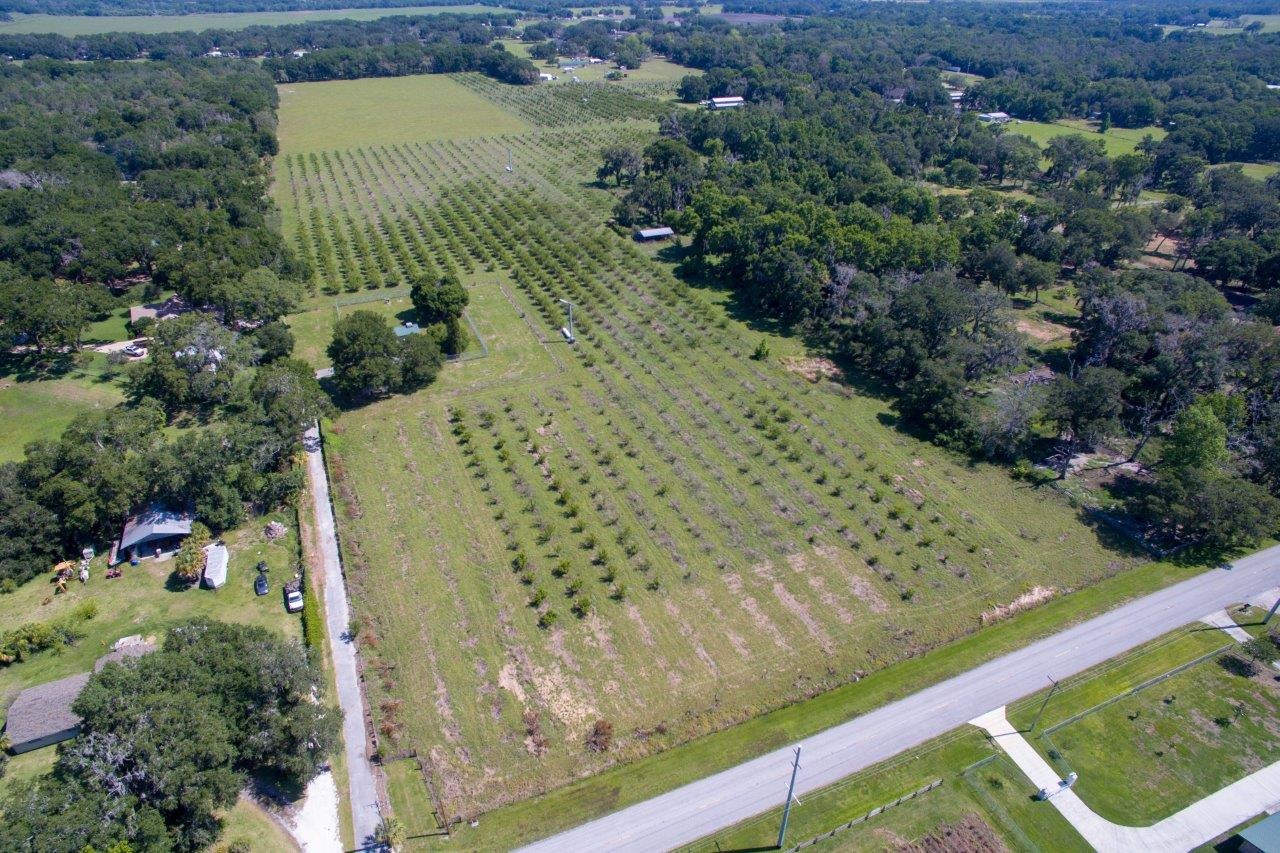 Certified Organic Farmland and Country Homesite in Plant City, FL