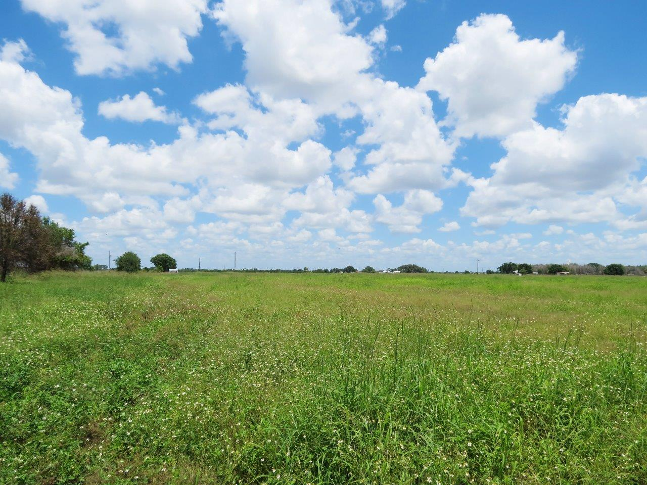 Albritton Road Two 7.5 Acre Country Homesites in Parrish, Florida