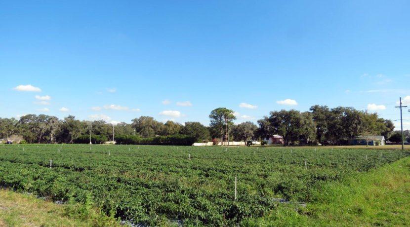 03-McIntosh Rd Farm Homesite.