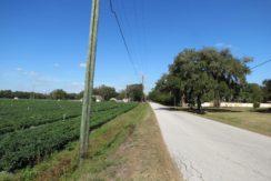 07-McIntosh Rd Farm Homesite.