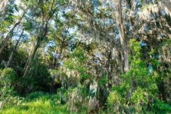 04-Doe Creek Reserve 5 AC