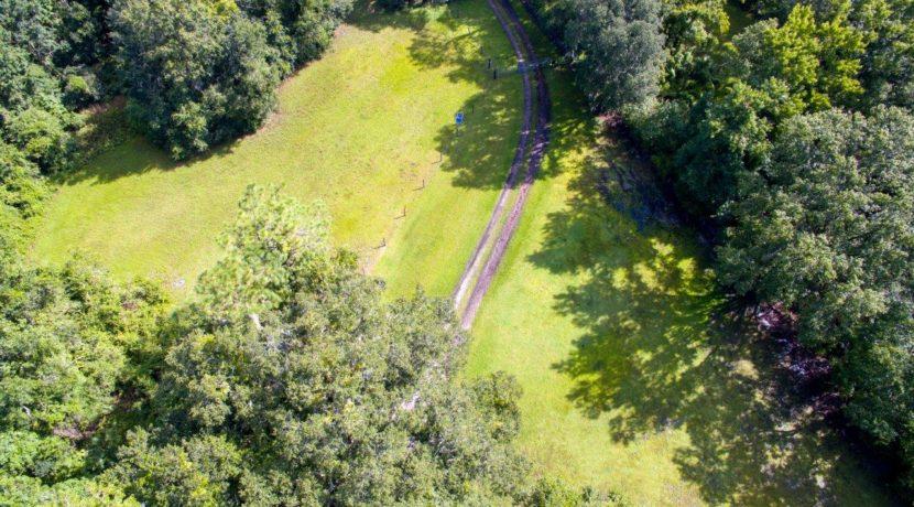 02-Secluded Old FL Getaway Estate