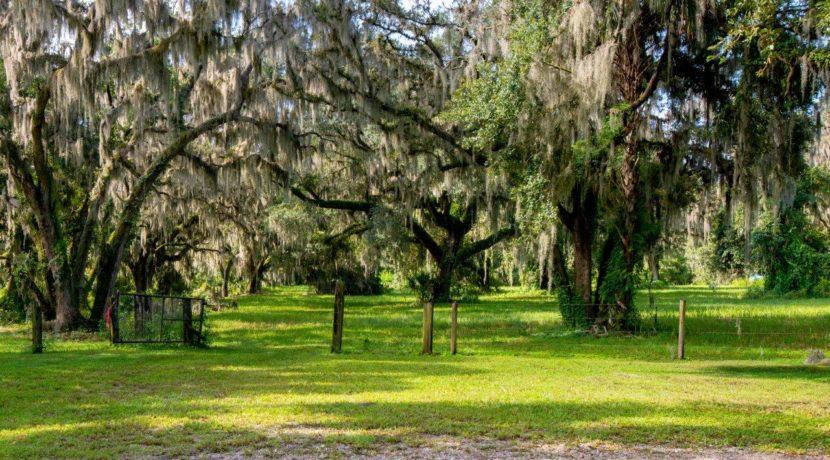 04-Secluded Old FL Getaway Estate