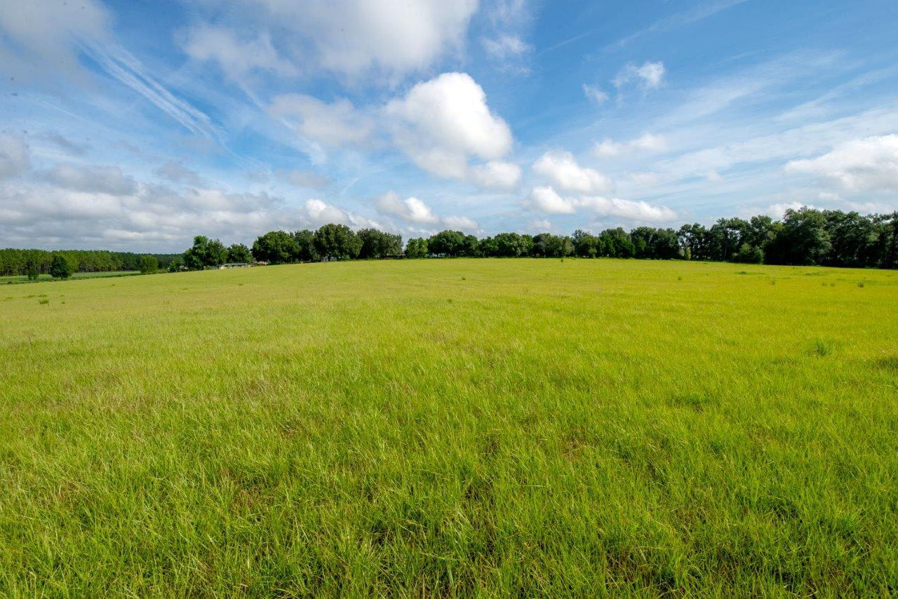 Rolling Hills Farm and Homesites in Dade City, FL