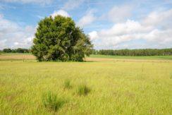 05-Rolling Hills Farm Homesites