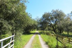01-Secluded Wooded Homesite