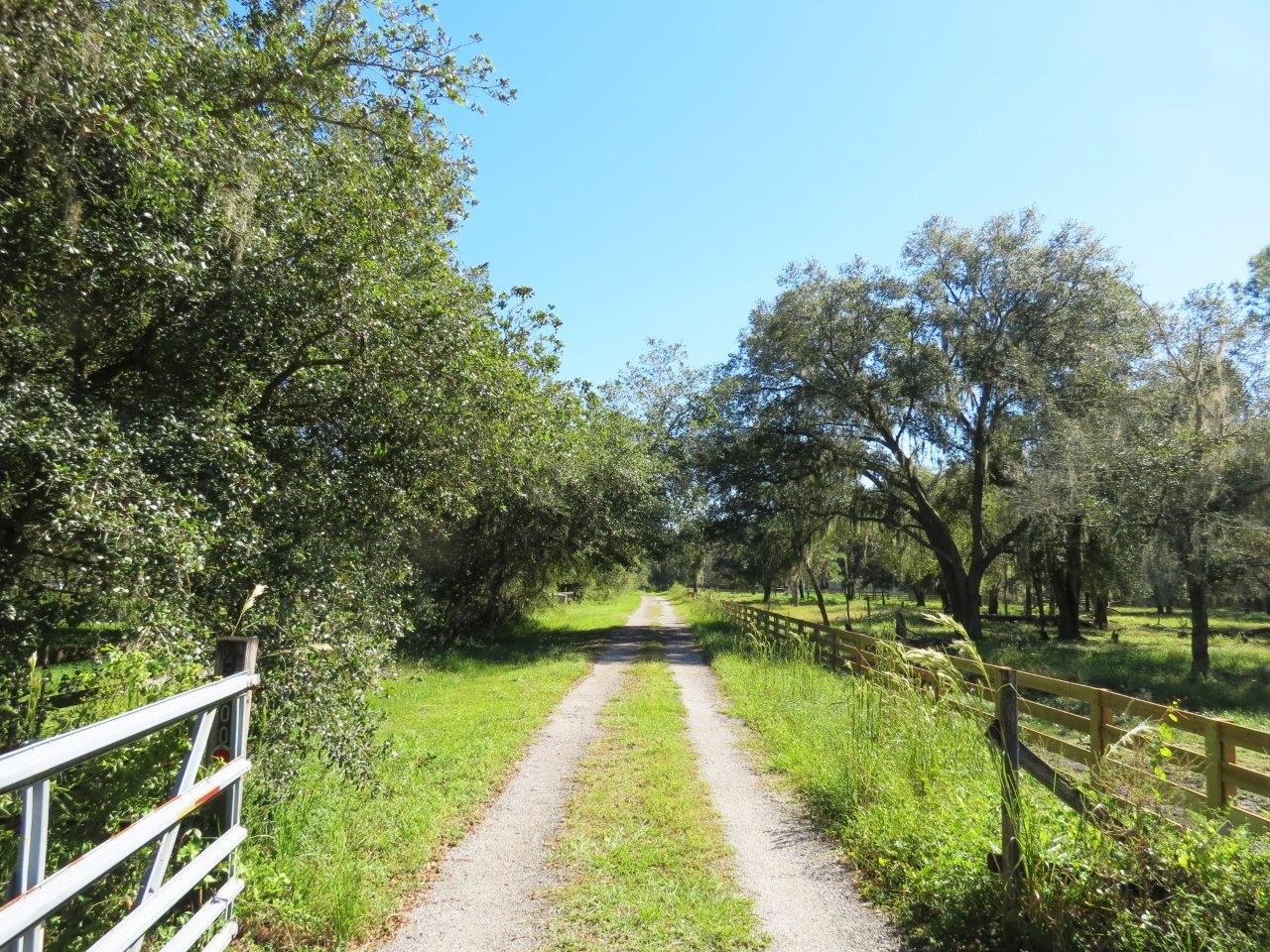 Secluded Wooded 18 Acre Homesite in Plant City, FL