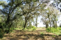 01-Wooded Wumauma Homesite