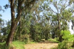 02-Wooded Wumauma Homesite