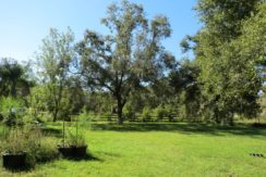 03-Secluded Wooded Homesite