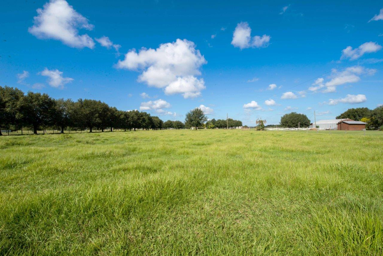 Browning Road Chito Branch Estate Homesite in Lithia, Florida