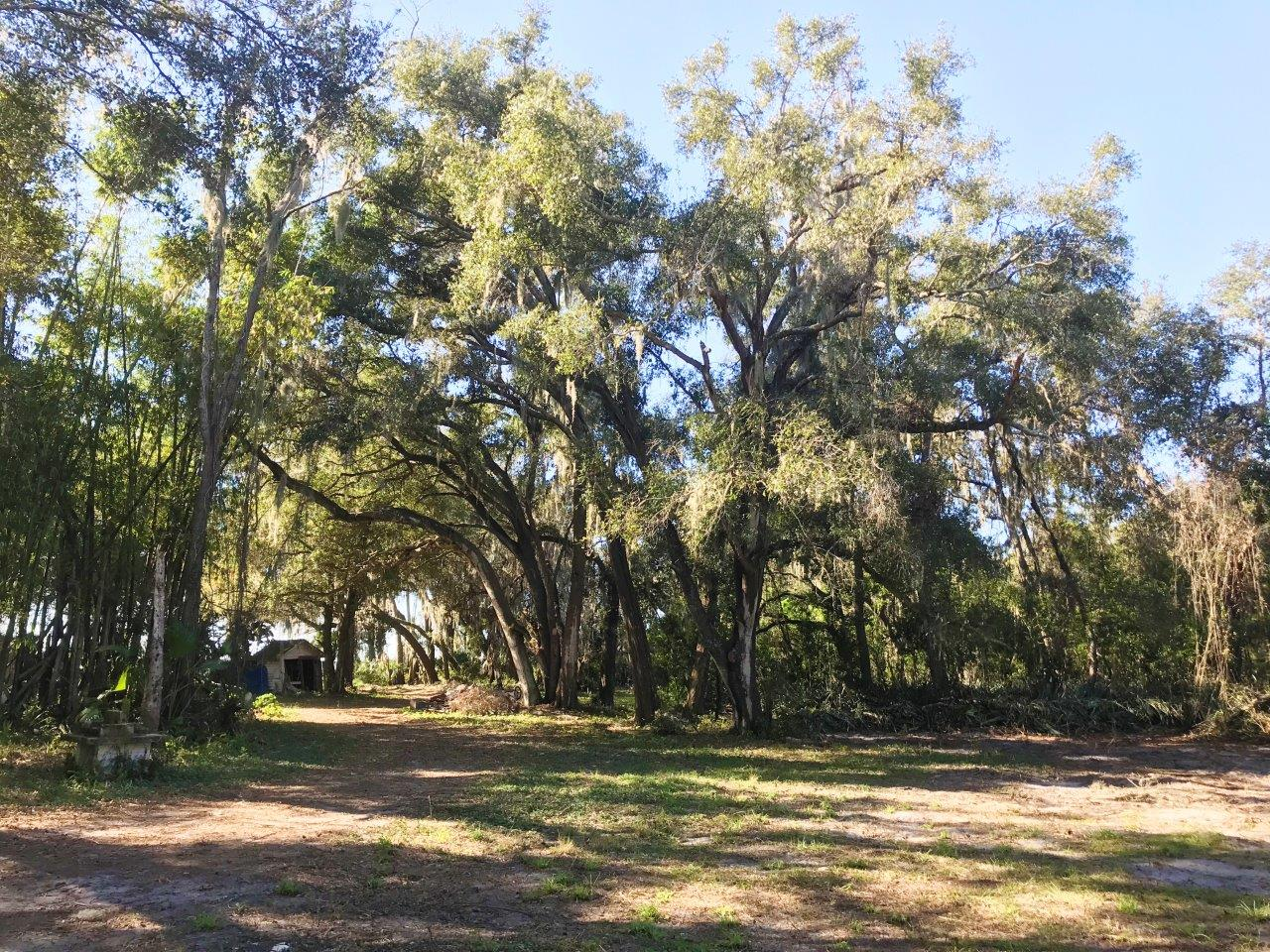 Balm Country Homesites in Lithia, Florida