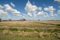 03-Limestone Ranch 80 AC Arcadia