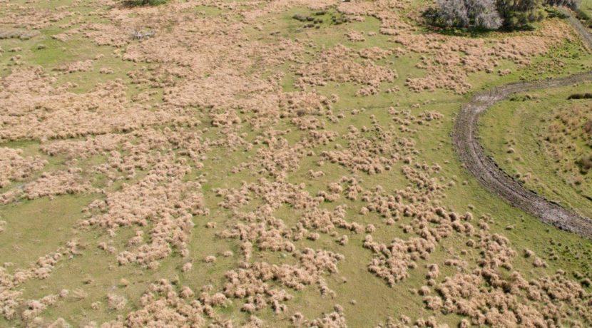 05-Limestone Ranch 80 AC Arcadia